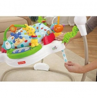 Прыгунки Fisher-Price Zoo Party Jumperoo